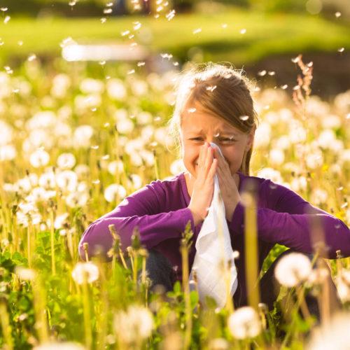Histamin und Allergien